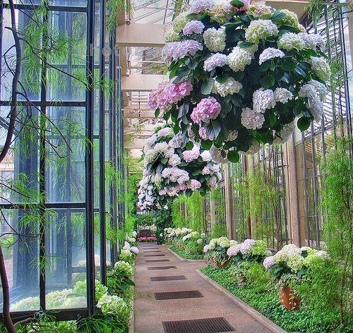 jardines-colgantes-19