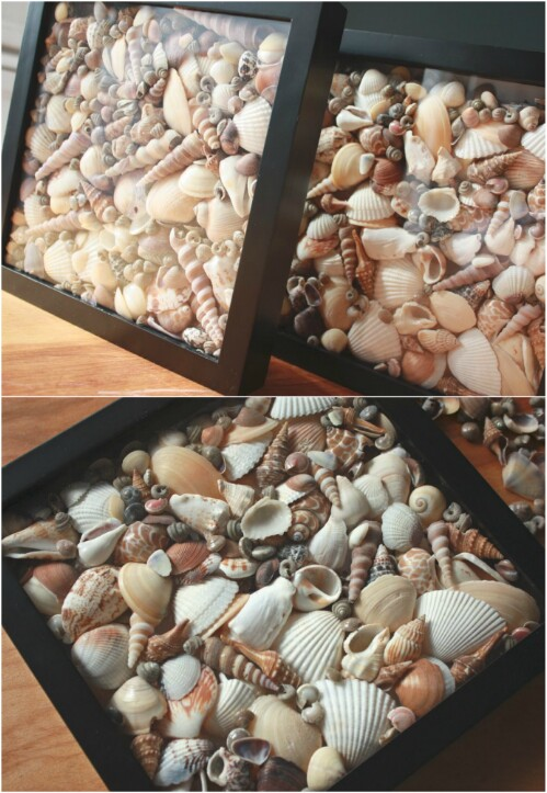 artesanias-conchas-mar-4
