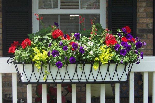 balcon-cajas-flores-12