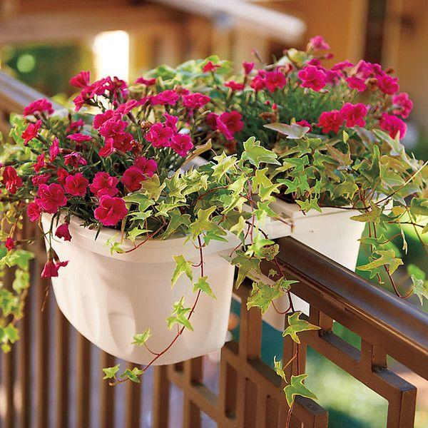 balcon-cajas-flores-3