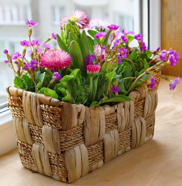 balcon-cajas-flores-4