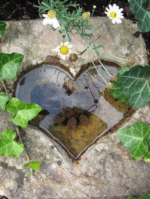corazon-jardin-decor-2
