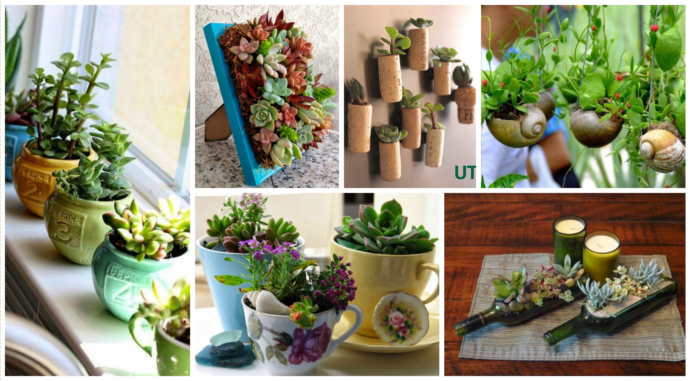 10 ideas creativas con plantas para decorar tu hogar for Ideas para decorar tu hogar reciclando