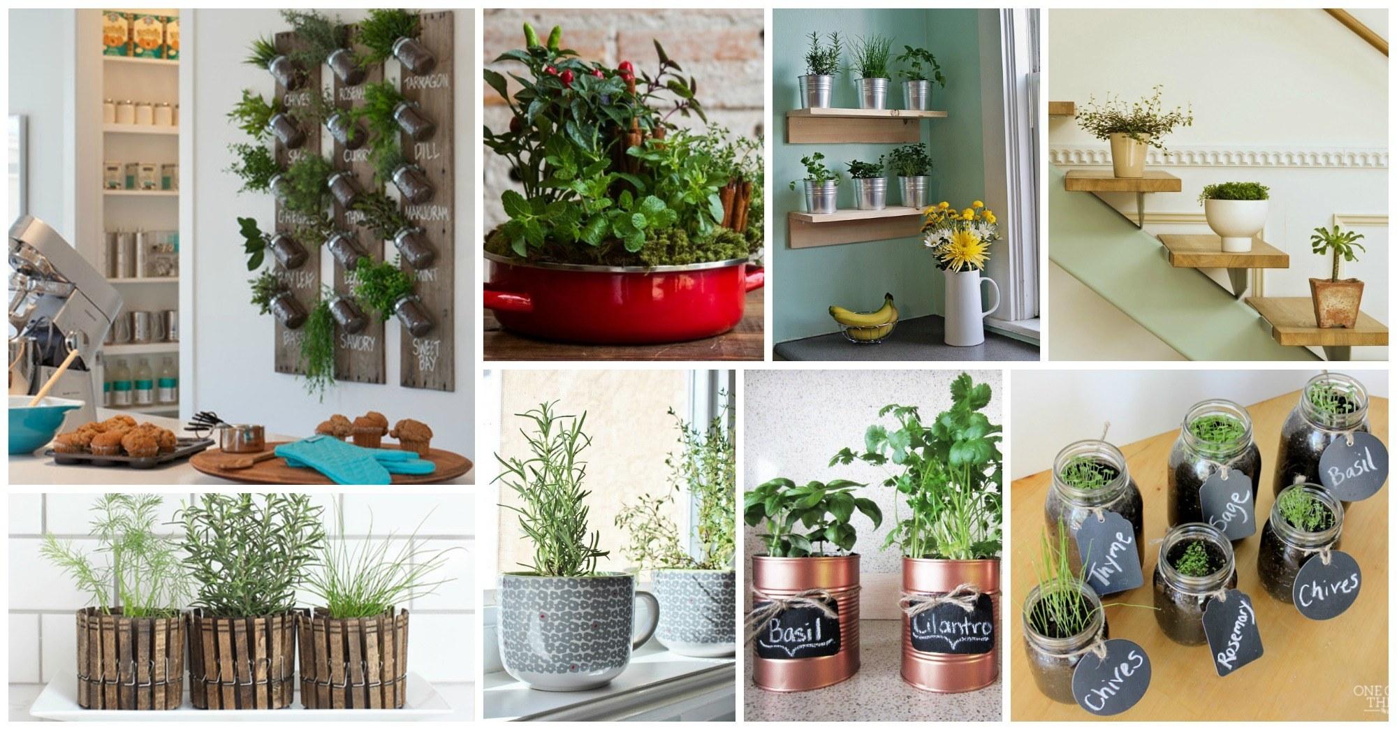 Jardines originales para embellecer su cocina for Jardines originales