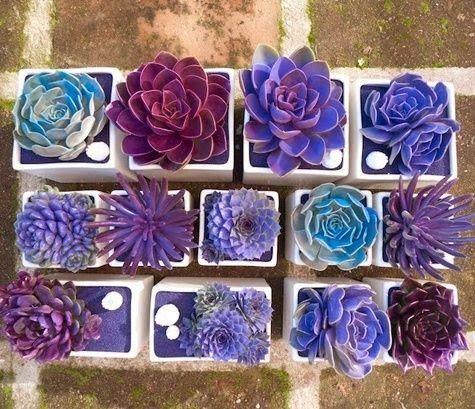 ideas-decorar-tu-jardin-12