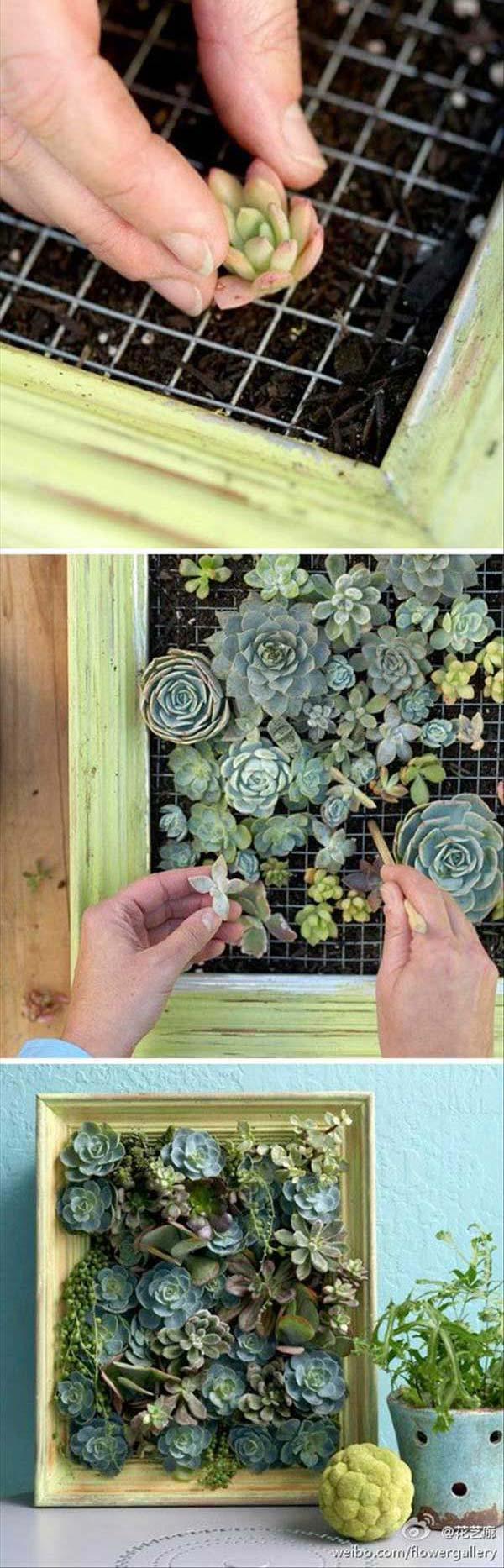 25 Maravillosas Ideas para Tu Mini Jardin