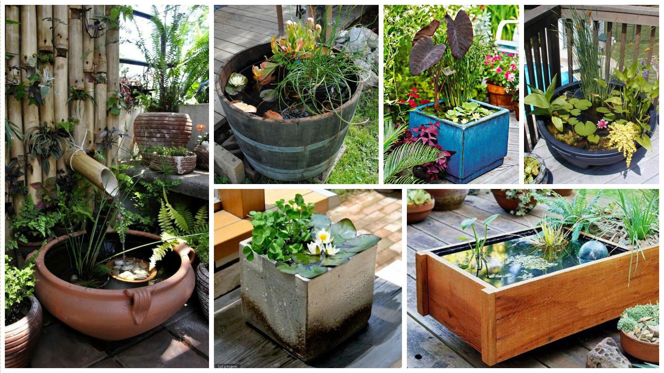 15 impressionantes ideas mini jardines acu ticos for Jardines acuaticos