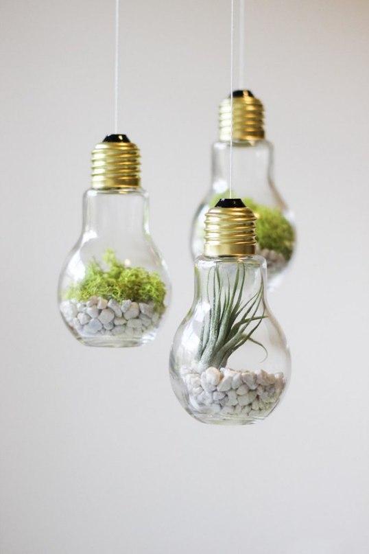 ideas-terranio-8