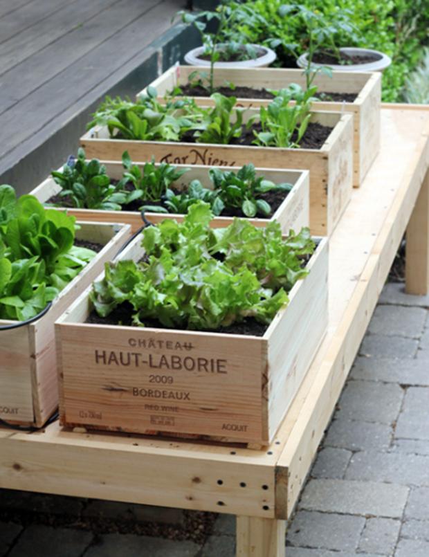 jardin-con-cajas-madera-10