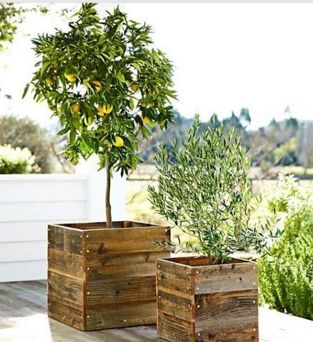 jardin-con-cajas-madera-15