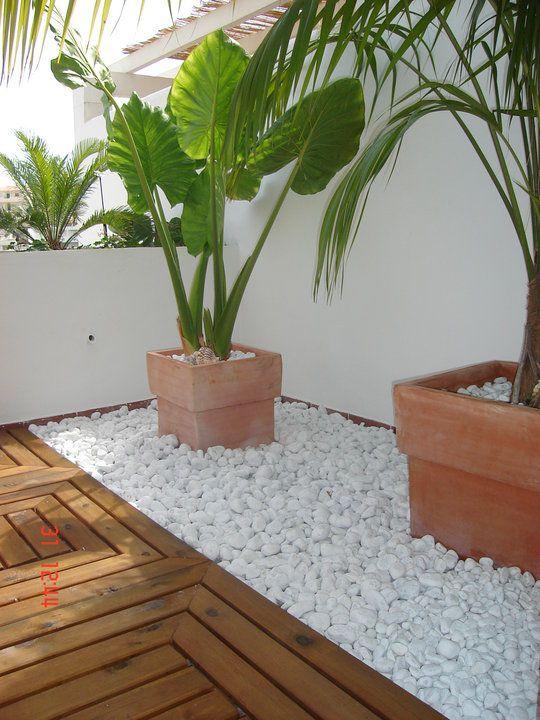 jardin-con-piedras-17