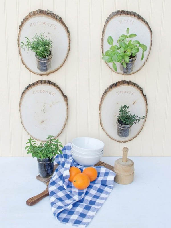jardin-hierbas-10