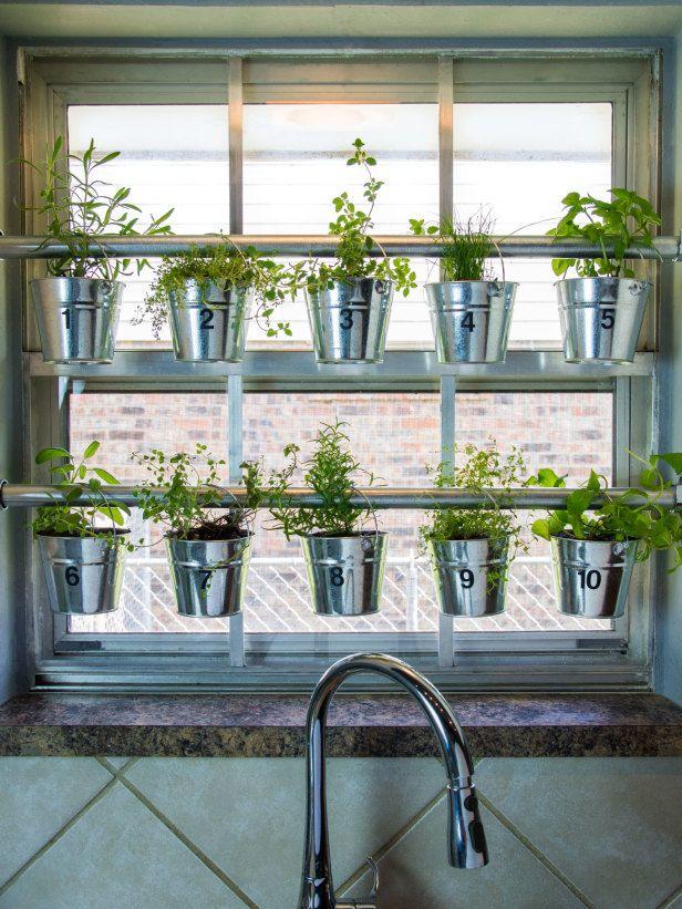 jardin-hierbas-16