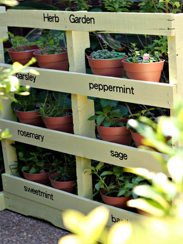 jardin-hierbas-18