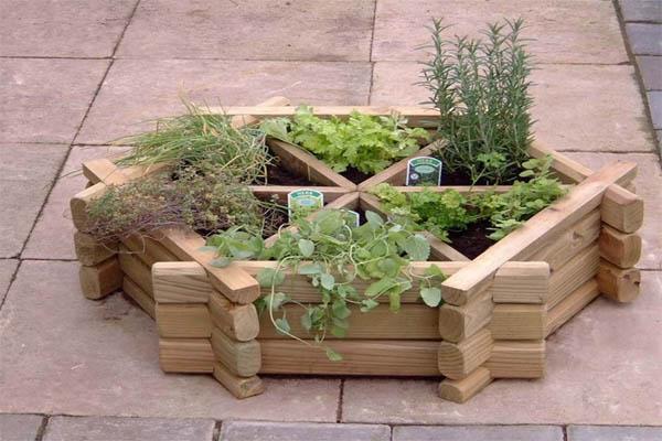 jardin-hierbas-2