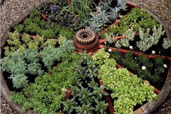 jardin-hierbas-3