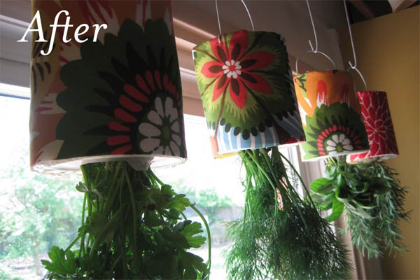 jardin-hierbas-4