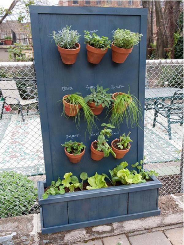 jardin-hierbas-8