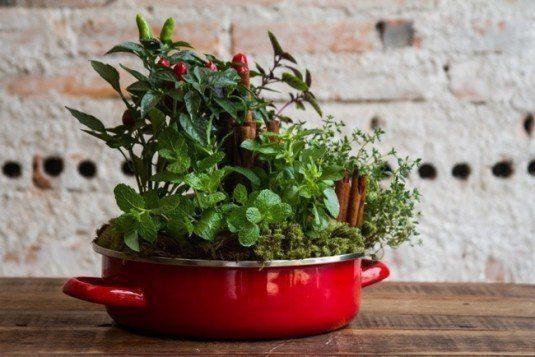 jardines-cocina-10