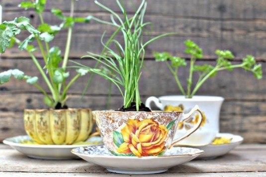 jardines-cocina-11