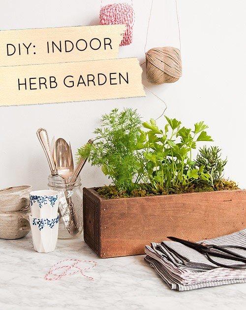 jardines-cocina-5