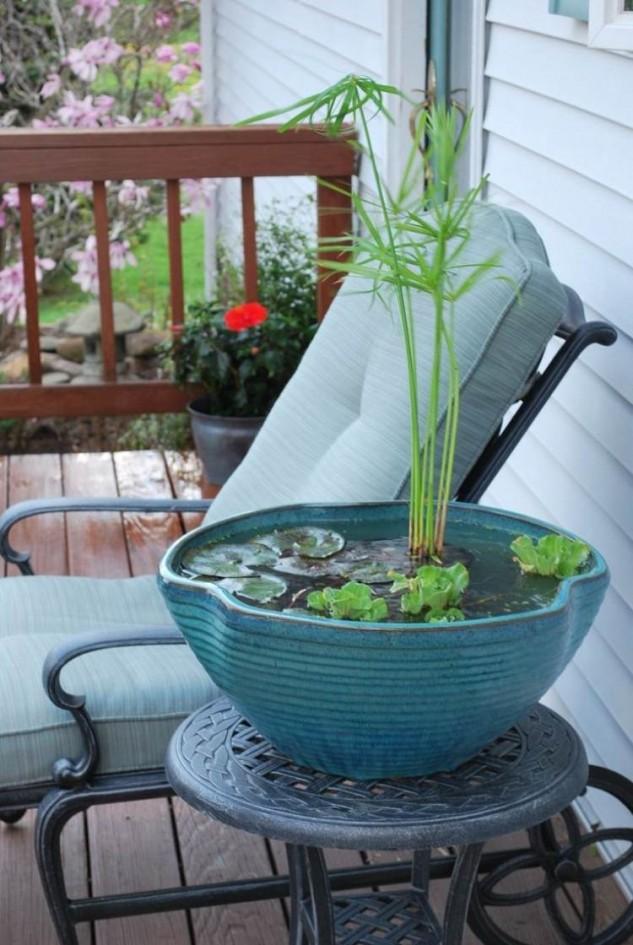 mini-jardines-acuaticos-4
