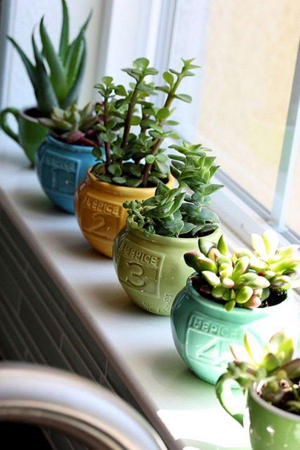 mini-jardines-interior-12