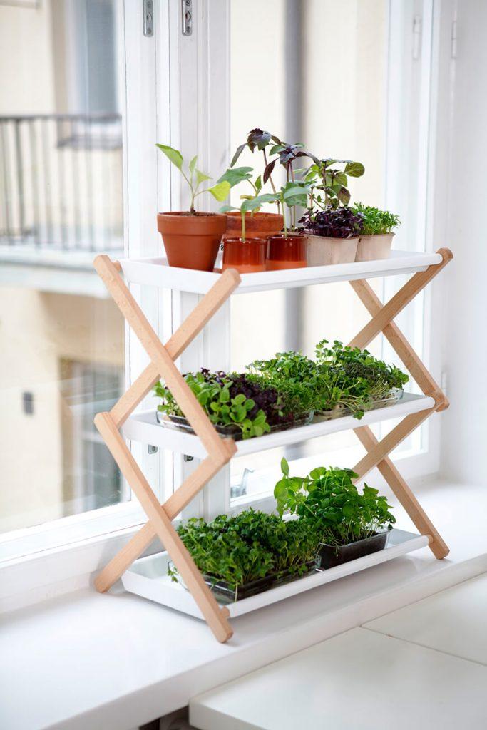 mini-jardines-interior-3