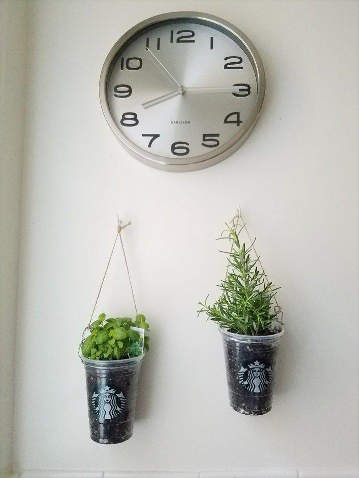 mini-jardines-interior-4