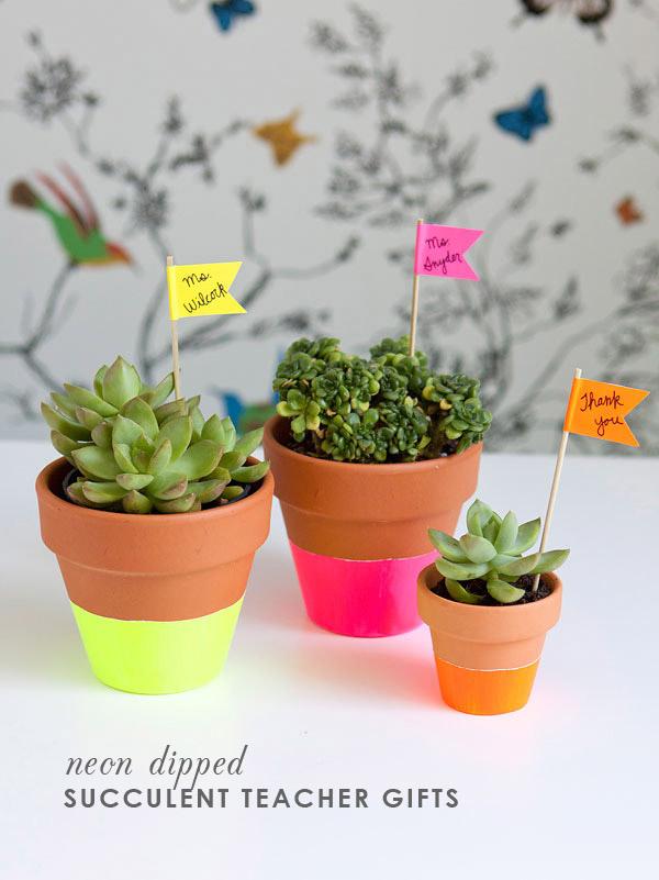 mostrar-sus-plantas-12