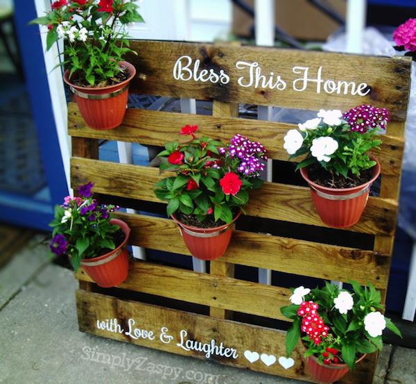 plantas-decorar-hogar-11