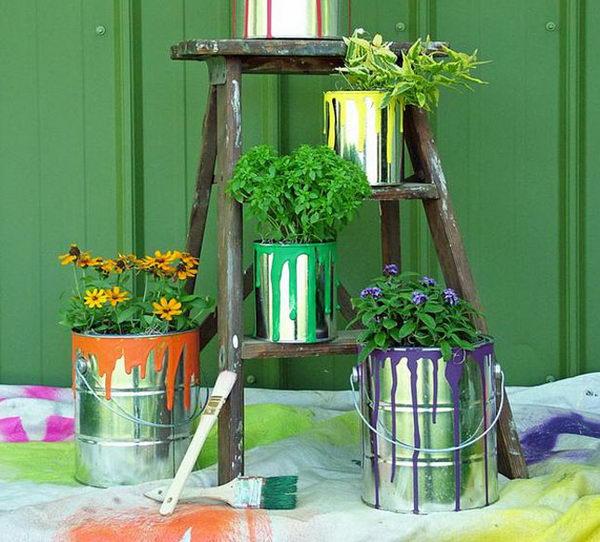 plantas-decorar-hogar-12