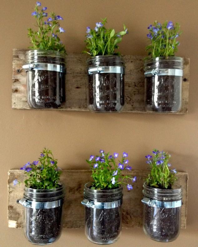 plantas-decorar-hogar-14
