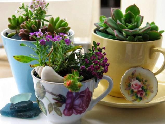 plantas-decorar-hogar-6