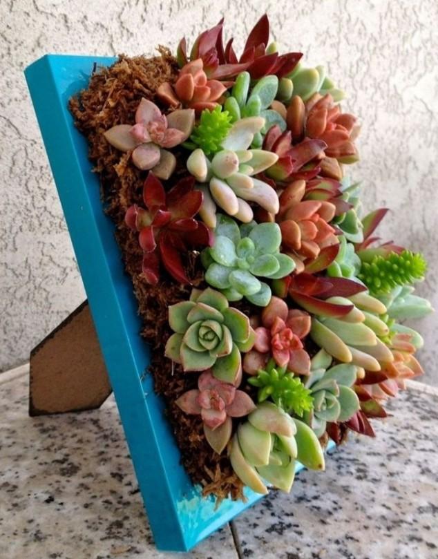 plantas-decorar-hogar-8
