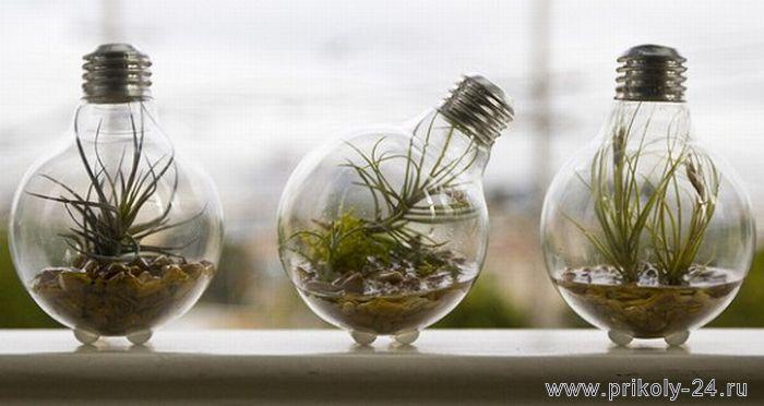 reciclaje-de-bombillas-tradicionales-11